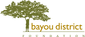 Bayou District Foundation